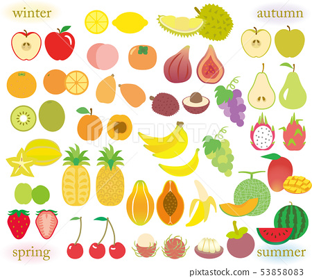 Seasonal Fruits Set Stock Illustration 53858083 Pixta