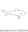 Coloring book for children, shark 53861810