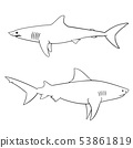Coloring book for children, sharks 53861819