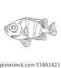 Coloring book for children, fish 53861821