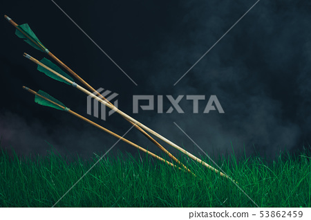 Three wooden arrows in the grass. Beautiful smog 53862459