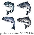 Salmon sketch fish, fishing catch icon 53870434