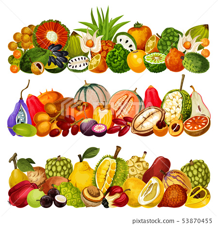 Exotic tropical fruits, farm agriculture harvest 53870455