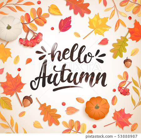 Hello Autumn banner in frame of autumn leaves. 53888987