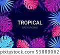 Summer tropical design for banner, poster, card. 53889062