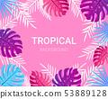 Summer tropical design for banner, poster, card. 53889128