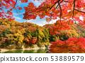 秋天Nagaoki秋葉 53889579