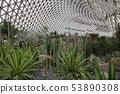 上海辰山植物園溫室 53890308