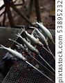 Salt-grilled sweetfish 53895232