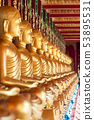 Row of Golden Thai's Buddha statue in temple 53895531