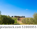 Tuscany hills landscape, Italy 53900955