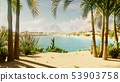 An oasis in the desert. Clear hot day. Distant mountains, sand dunes and a sultry sky. Beautiful 53903758