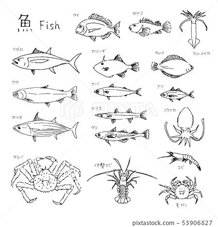 魚在市場上 53906827