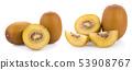 gold kiwi fruit isolated on white background 53908767
