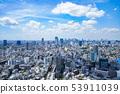 Tokyo, Shibuya, Shinjuku, urban scenery 53911039