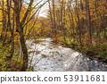 Autumn Oirase mountain stream 205 53911681