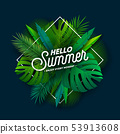 Hello Summer Illustration with Typography Letter and Tropical Plants on Dark Blue Background. Vector 53913608