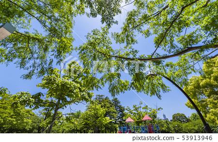 Landscape of Sarue Onshi Park 53913946