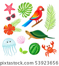 Summer Elements, Plants and Animals Objects Vector 53923656