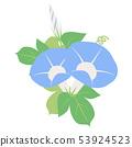 파란 나팔꽃 (꽃 봉오리, 잎) 53924523