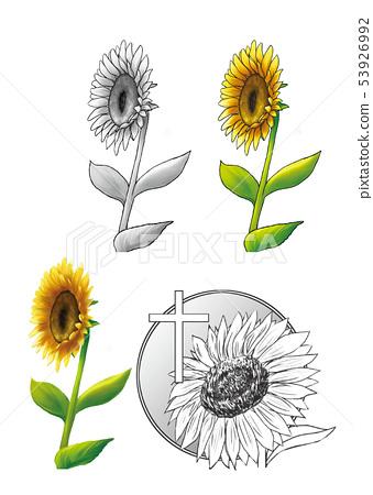 꽃 10 53926992