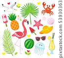 Tropical Summer Symbols, Animals and Plants, Food 53930363