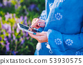 Hands of woman using smartphone in flowers field. Technology concept. 53930575
