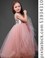 Little girl in a pink dress, with a beautiful hair. 53934310