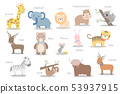 Cute animals set cartoon doodle element 53937915