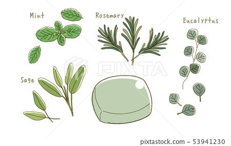 Organic, herb, soap 53941230
