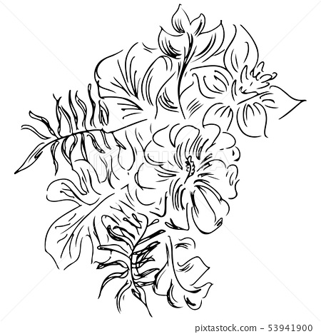 Hand Drawn Sketch With Tropical Leaves And Stock Illustration 53941900 Pixta Free autumn leaves coloring page printable. https www pixtastock com illustration 53941900