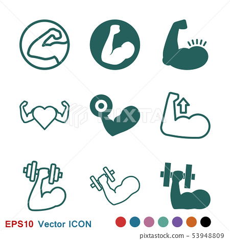 Muscle icon logo, illustration, vector sign symbol 53948809