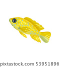 Little yellow fish. Vector illustration on white background. 53951896