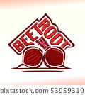 Vector logo for beetroot 53959310