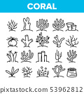Corals Reefs And Seaweed Vector Linear Icons Set 53962812