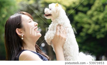 馬耳他寵物 53973953