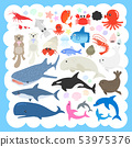 Sea life illustration set 53975376