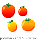迷你番茄 53976147