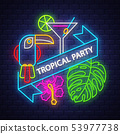 Tropical summer holiday banner. Neon banner.  53977738