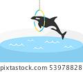범고래 53978828