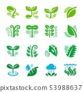 plant and leaf icon set 53988637