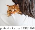 Cute ginger cat is peeping over man's shoulder 53990360