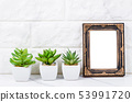 Blank vintage photo frame on wall with cactus 53991720