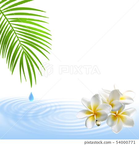 Este Monstera Hibiscus Tropical Plumeria Summer Refreshing 54000771