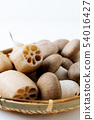 Daikokumoto shimeji lotus root 54016427