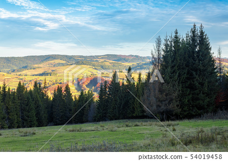 autumn countryside landscape in mountains 54019458