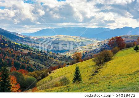 light  beam falls on hillside with autumn forest i 54019472