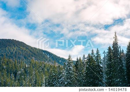 winter scenery in mountains 54019478