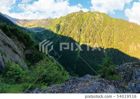 valley of the balea stream in fagaras mountains 54019516