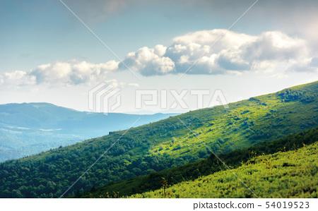 grassy meadow on hillside of mountain ridge 54019523
